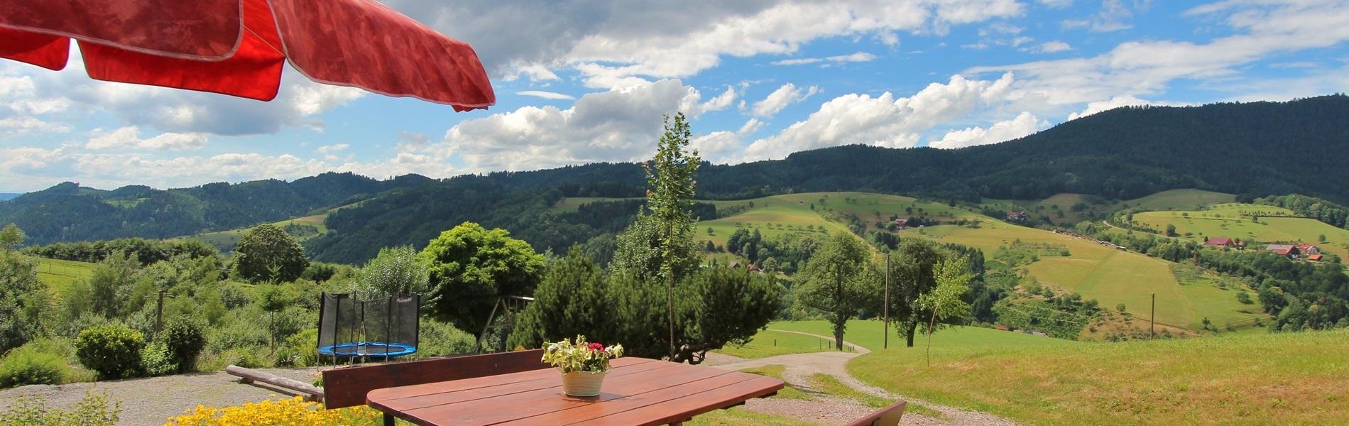 Ausblicke Ferienhaus Hubhof Oberharmersbach