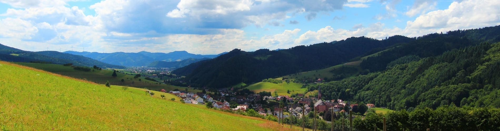 Ausblick über Oberharmersbach