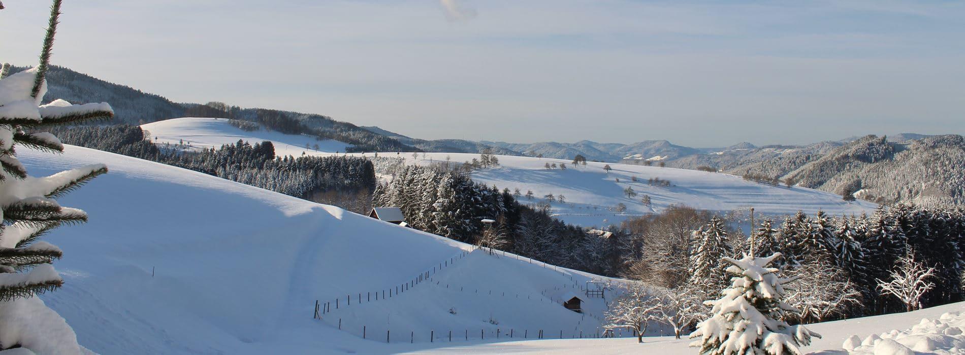Winter über Oberharmersbach im Schwarzwald